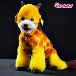 Краска для шерсти Opawz Dog Hair Dye Glorious Yellow 120 мл артикул OW01-DHD04 фото, цена gr_18346-02, фото 2