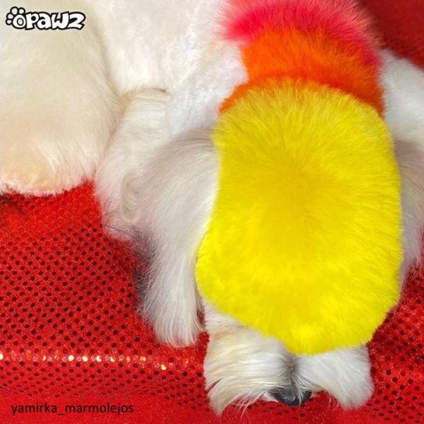 Желтая краска для животных Opawz Dog Hair Dye Glorious Yellow 150 мл.