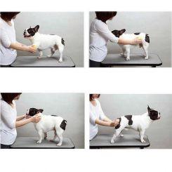 Силиконовая щетка для короткой шерсти Doggy Man Honey Smile 7,5x4 см. артикул DGM-77 фото, цена gr_21473-04, фото 4
